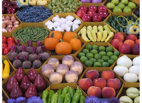 Картинки овощи осенние