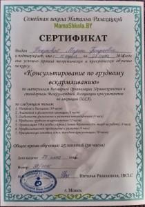сертификат по гв